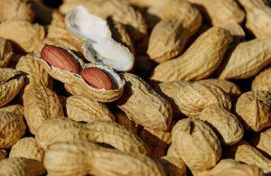 Maapähkinä Ravintosisältö