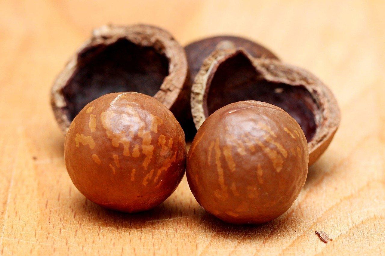 Macadamia pähkinä hinta ja terveellisyys