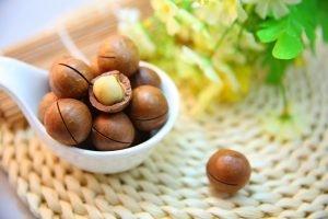 Macadamia pähkinä terveellisyys hinta ja ravintoarvot